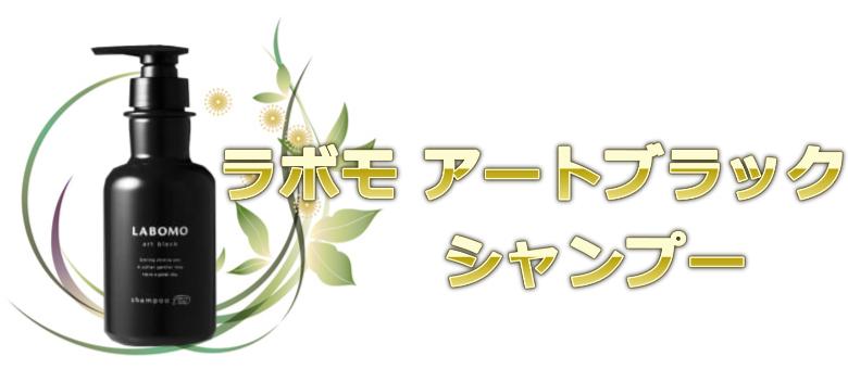 5位:育毛サロン仕様のシャンプーおすすめラボモ アートブラック シャンプー (アートネイチャー)