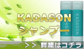 カダソンスカルプシャンプー(KADASON)の通販情報